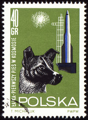 First dog Laika in space on post stamp