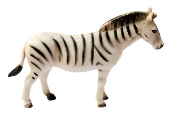 zebra Toy on white background