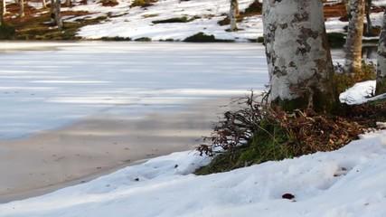 Lake Maulazzo in Sicily. Frozen lake in winter