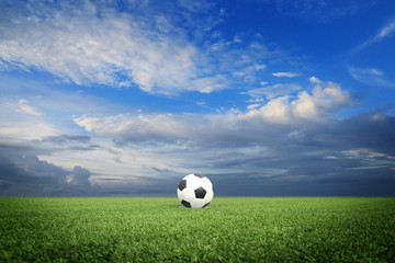 soccer field with blue sky