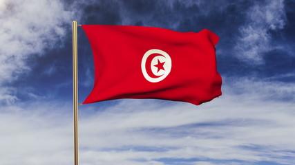 Tunisia flag waving in the wind. Green screen, alpha matte