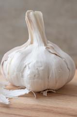 Clove garlic vertically
