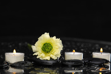 yellow ranunculus with three candle and therapy stones