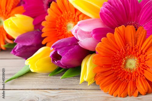 Blumen - Tulpen und Gerbera