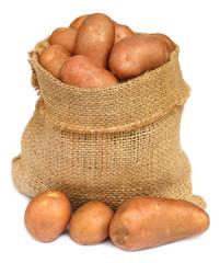 Potatoes in a sack bag