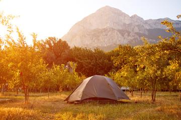 tents in the garden