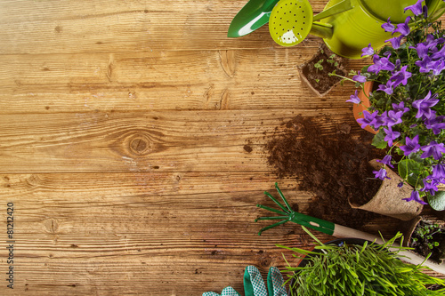 Outdoor gardening tools and plants. - 81212420