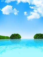 海 島 風景