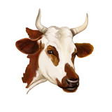 Fototapety cow vector illustration  hand drawn  painted watercolor