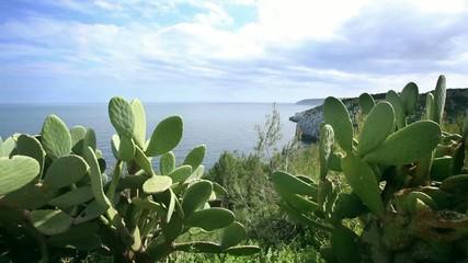 Costa Salentina - Santa Maria di Leuca