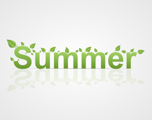 Summer text with green leaves on a white background