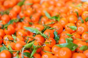 Fresh bio oranges on Paris farmer market