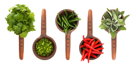 Fresh flavoring herbs and spices in in ceramic scoop