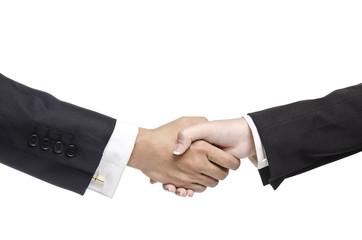 Business handshake against white background