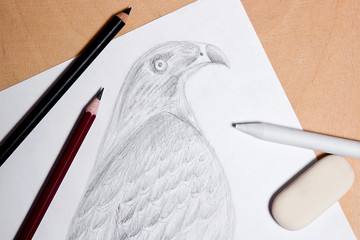 Pencil, eraser and stamp with graphite drawing hawk.