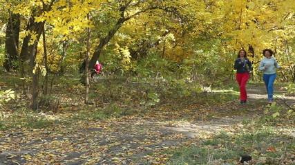 jogging. park, autumn