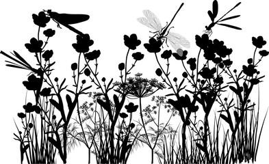dragonflies on black wild flowers in grass