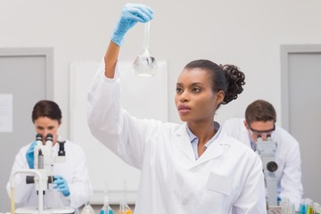 Scientist looking at white precipitate while colleagues working