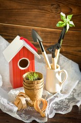 Peat pot against garden tools and bird-house on wood background