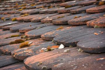Altes Dach, Dachschindeln