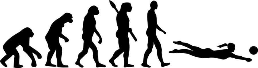 Beach Volleyball Evolution