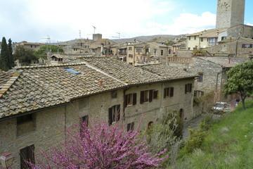 San Gimignano  tetti