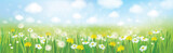 Fototapety Vector nature  spring background.