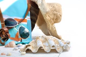 coquillages et accessoires de plage