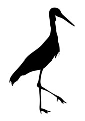 Storch Silhouette