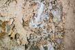 Wand mit Salpeter 01 - 81242657