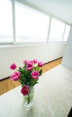 window zone in studio room