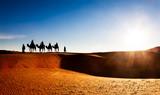 Camel caravan on sand dunes in the desert, Erg Chebbi, Morocco.