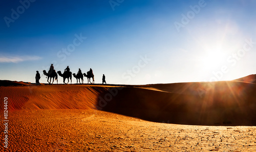 Camel caravan on sand dunes in the desert, Erg Chebbi, Morocco. - 81244470