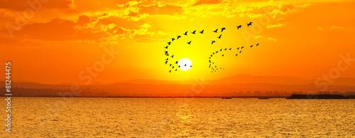 In de dag Oranje eclat panoramica del amanecer en el mar