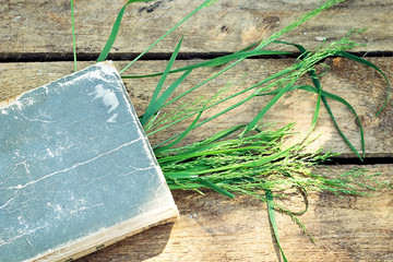 Background with book and grass on a wooden table