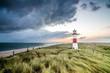 Leuchtturm in List auf Sylt am Ellenbogen - 81247210