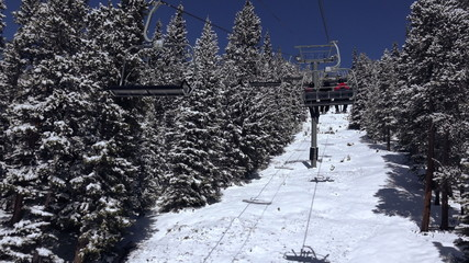 Riding Chairlift Trees Coated in Snow