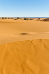 Dunes of Erg Chebbi at Morocco