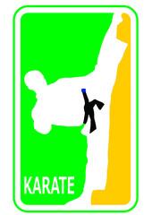 Karate Taekwondo Brasil