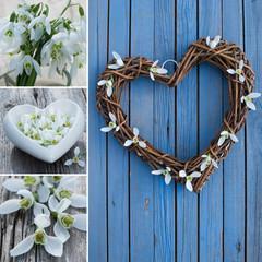 Schneeglöckchen mit Herz Collage