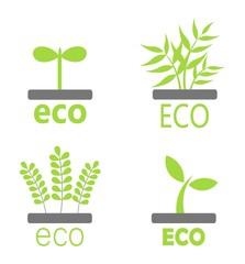 Eco plants