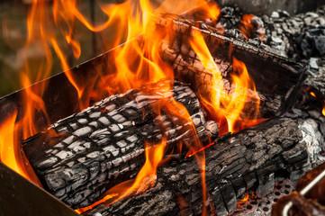 Ceppi di legna ardenti con lingue di fuoco nel barbecue