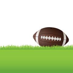 American Football Sitting on Grass Illustration
