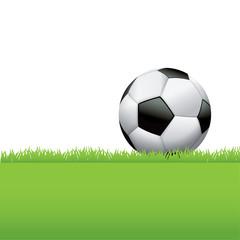 Soccer Ball Sitting in Grass Background Illustration