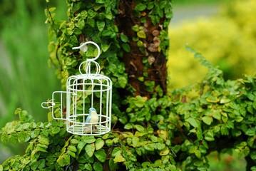 雑貨の小さな青い鳥と白い鳥かご.