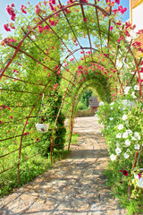Summer arch covered by vine