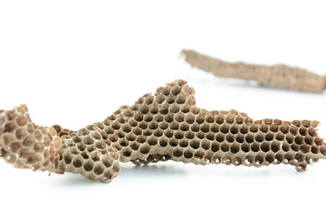 Dried honeycombs (beehive)