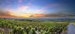 Leinwandbild Motiv Panorama of vineyards at sunrise time, Beaujolais, Rhone, France
