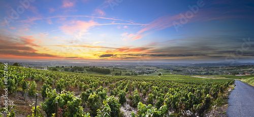 Papiers peints Europe Méditérranéenne Panorama of vineyards at sunrise time, Beaujolais, Rhone, France