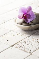 mineral decor with pebbles and orchid for spa treatment